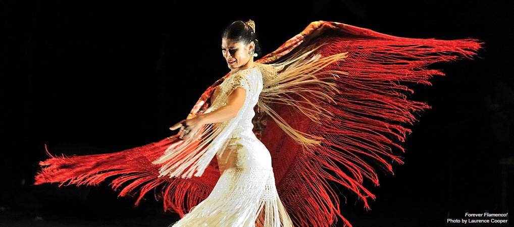 Slider 11 – Forever Flamenco!